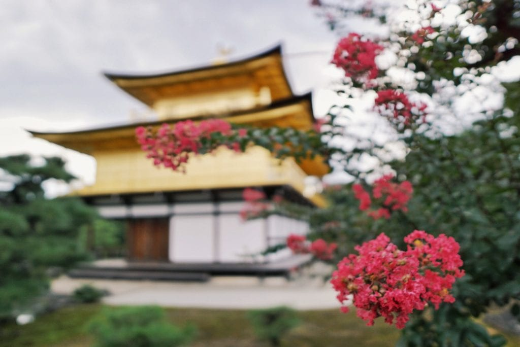 Der goldene Tempel in Kyoto