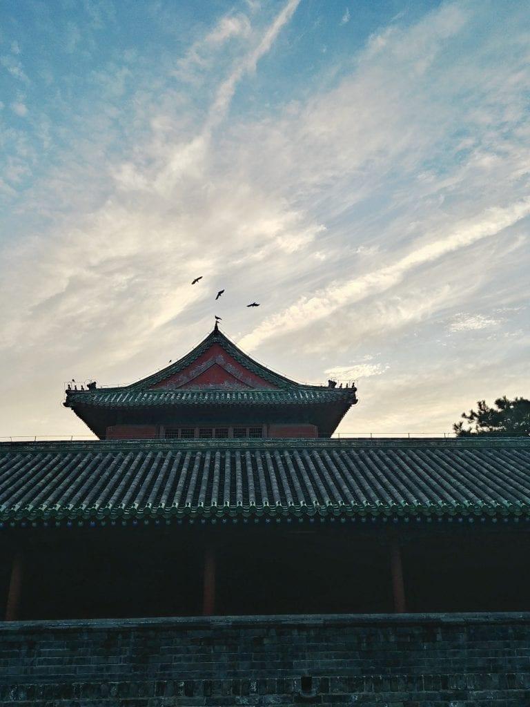 Vögel über Tempel bei Sonnenuntergang