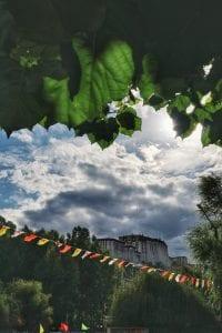 Potala Palace in Lhasa mit Blättern