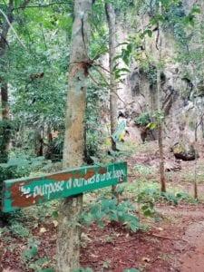 Cave hinter der Forest Monastery Thailand