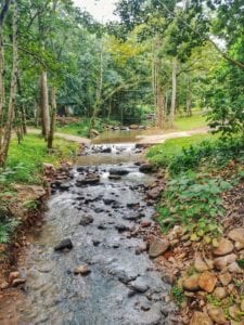 Fluss in der Forest Monastery Thailand