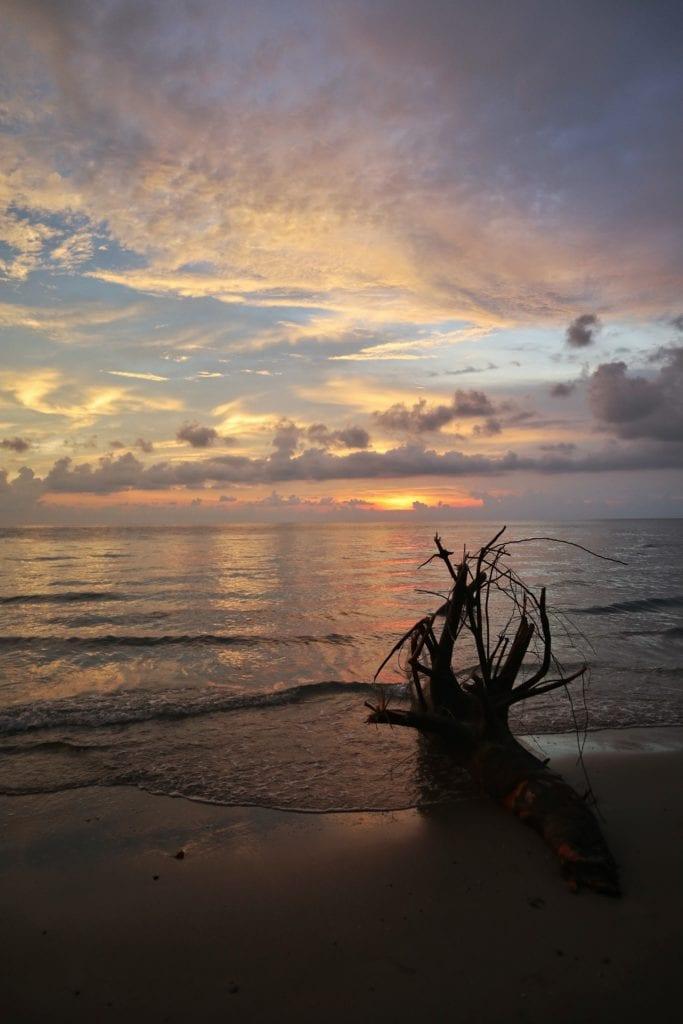 Baumstamm Sonnenuntergang Koh Chang