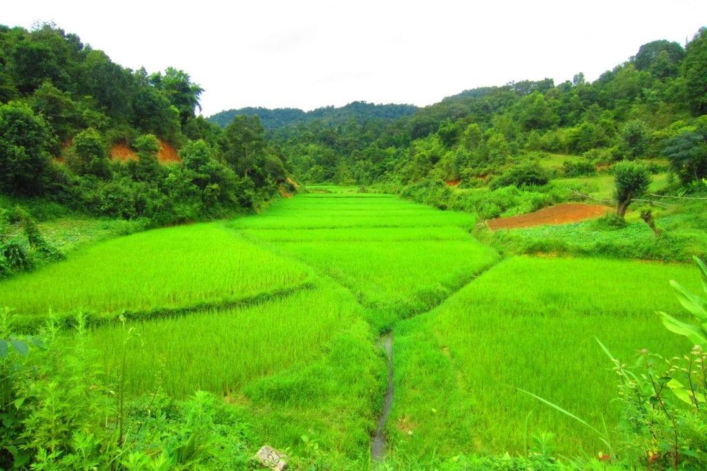Trek Myanmar zum Inle Lake Reisfelder