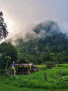 Morgennebel über Reisfelder der Wat Pa Tam Wua Forest Monastery