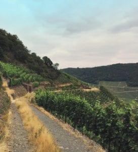 Rotweinwanderweg Ahrtal
