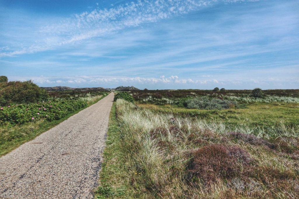 Fahrrad autobahn Sylt von Westerland nach List
