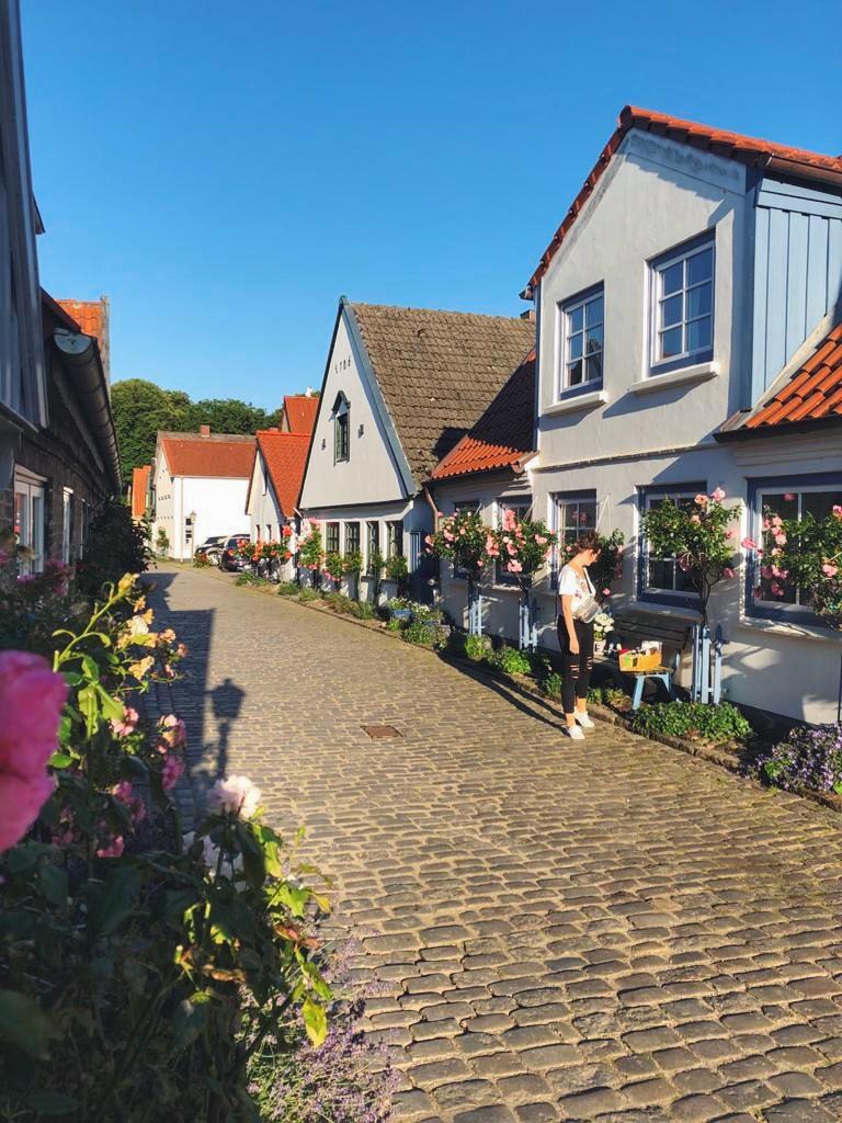 Häuser der Fischersiedlung Holm in Schleswig