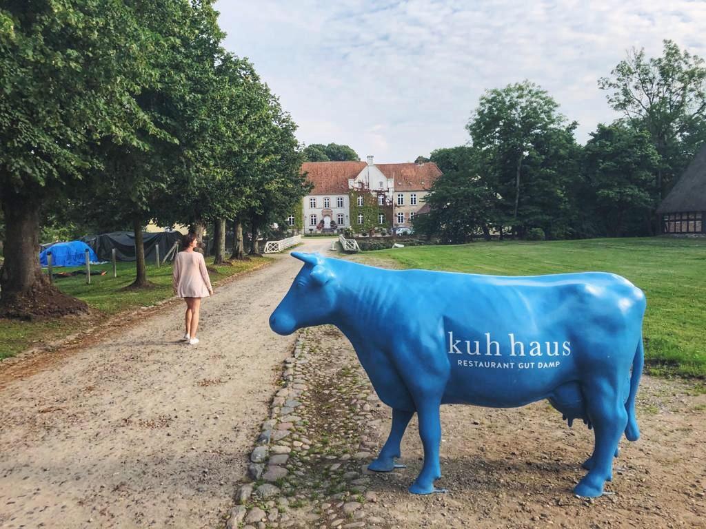 Restaurant Gut Damp blaue Kuh und Travellerin Lisa