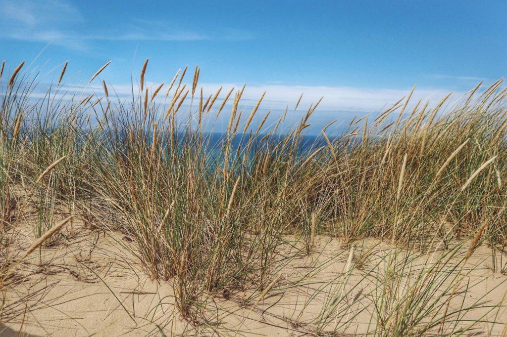 Sandafer Sylt