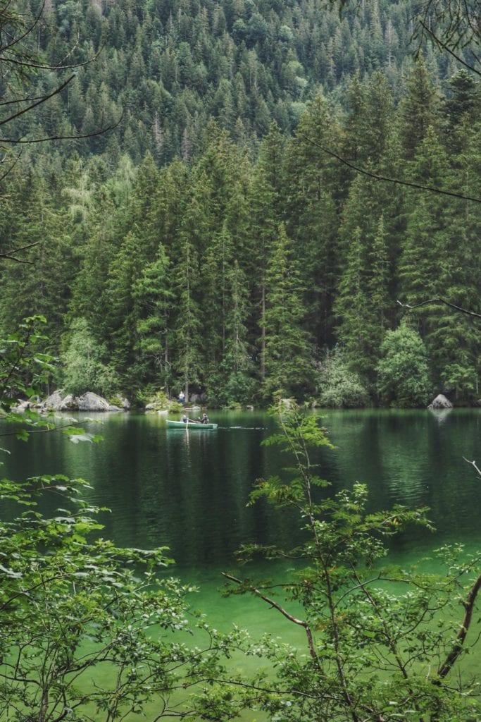 grünes Wasser im Hintersee Bayern