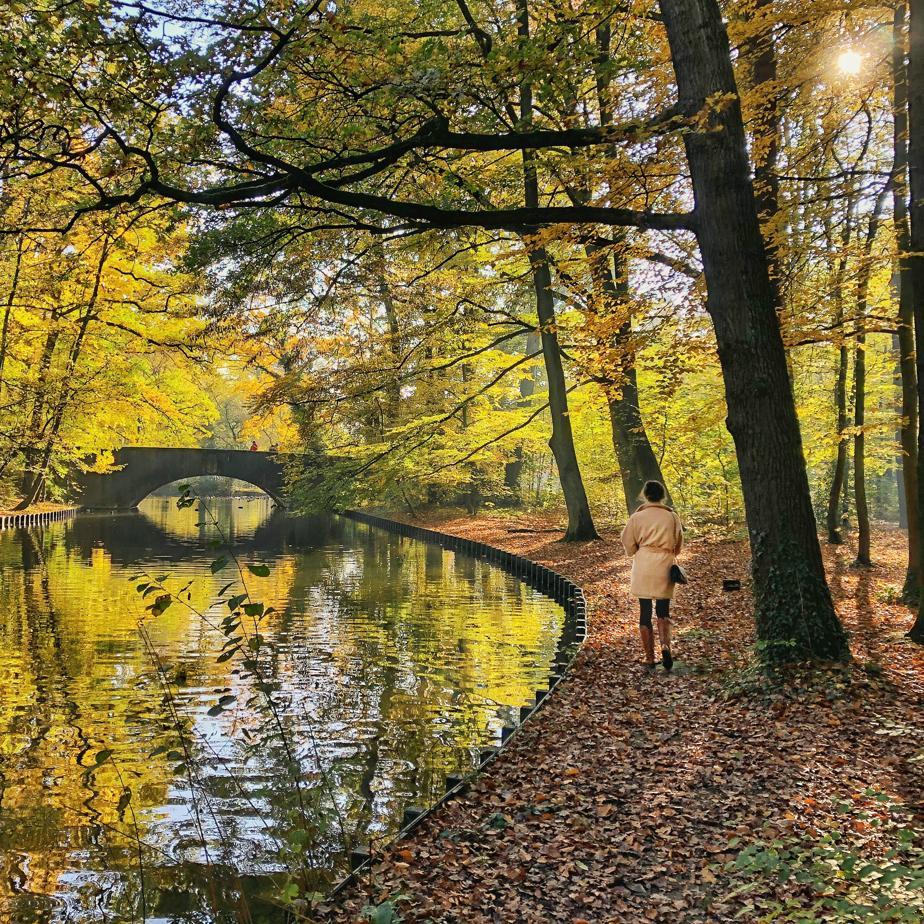 Herbstliche Ausflüge_Spaziergang im Wald