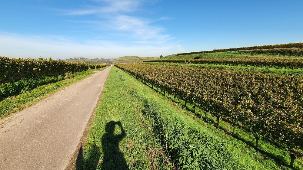 Herbstliche Ausflüge Süddeutschland_Kaiserstuhl Region_Gabriela Kern von Gabriela auf Reisen