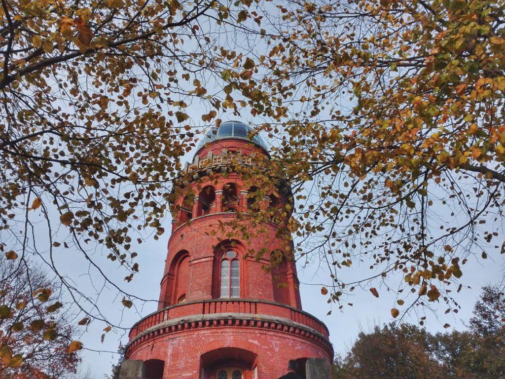 Rügen Attraktionen Turm am Rugard in Bergen