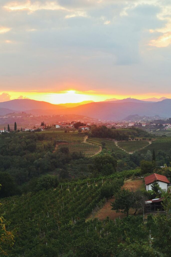 Slowenien Geheimtipp_Weinregion Brda Sonnenaufgang