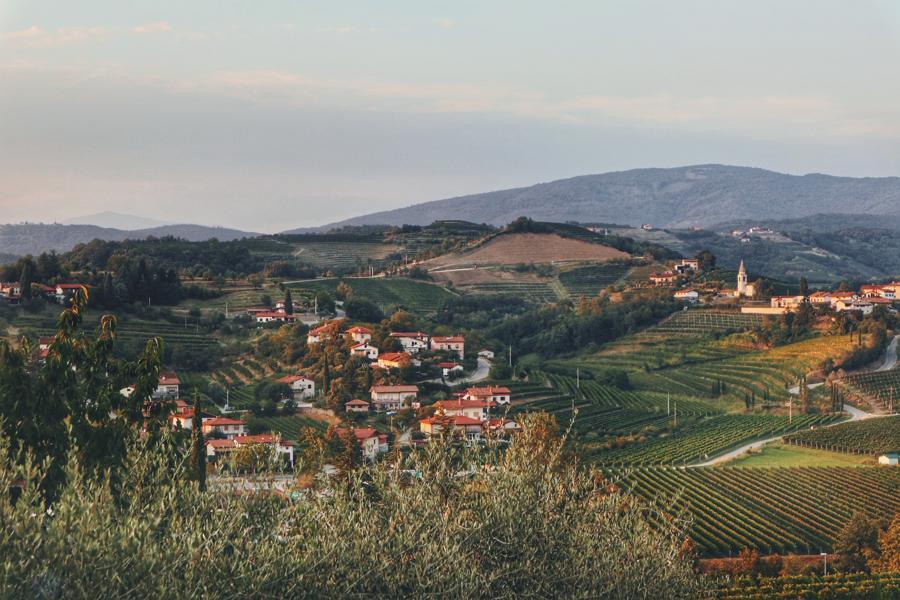 Slowenien Geheimtipp_Weinregion Brda Sonnenuntergang über Weinfelder