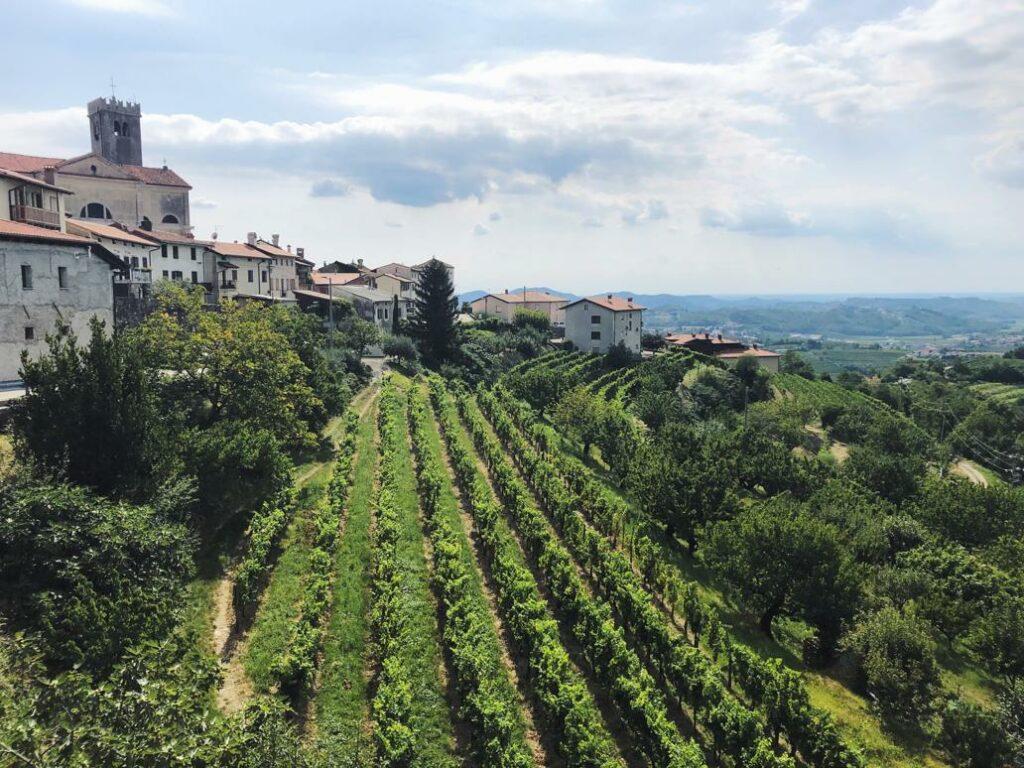 Slowenien Geheimtipp_Weinregion Brda_Smartno