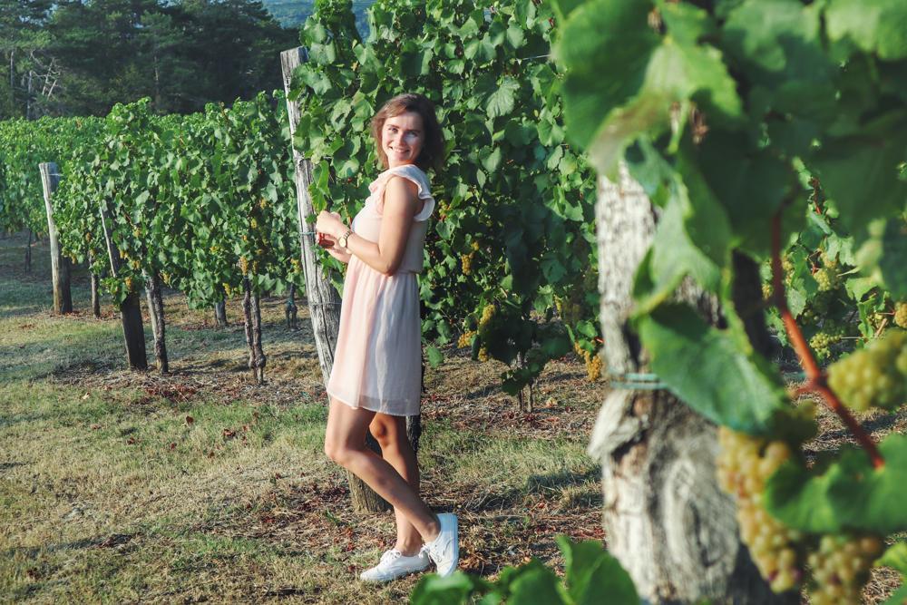 Slowenien Geheimtipp_Weinregion Brda_Travellerin in Weinfeldern